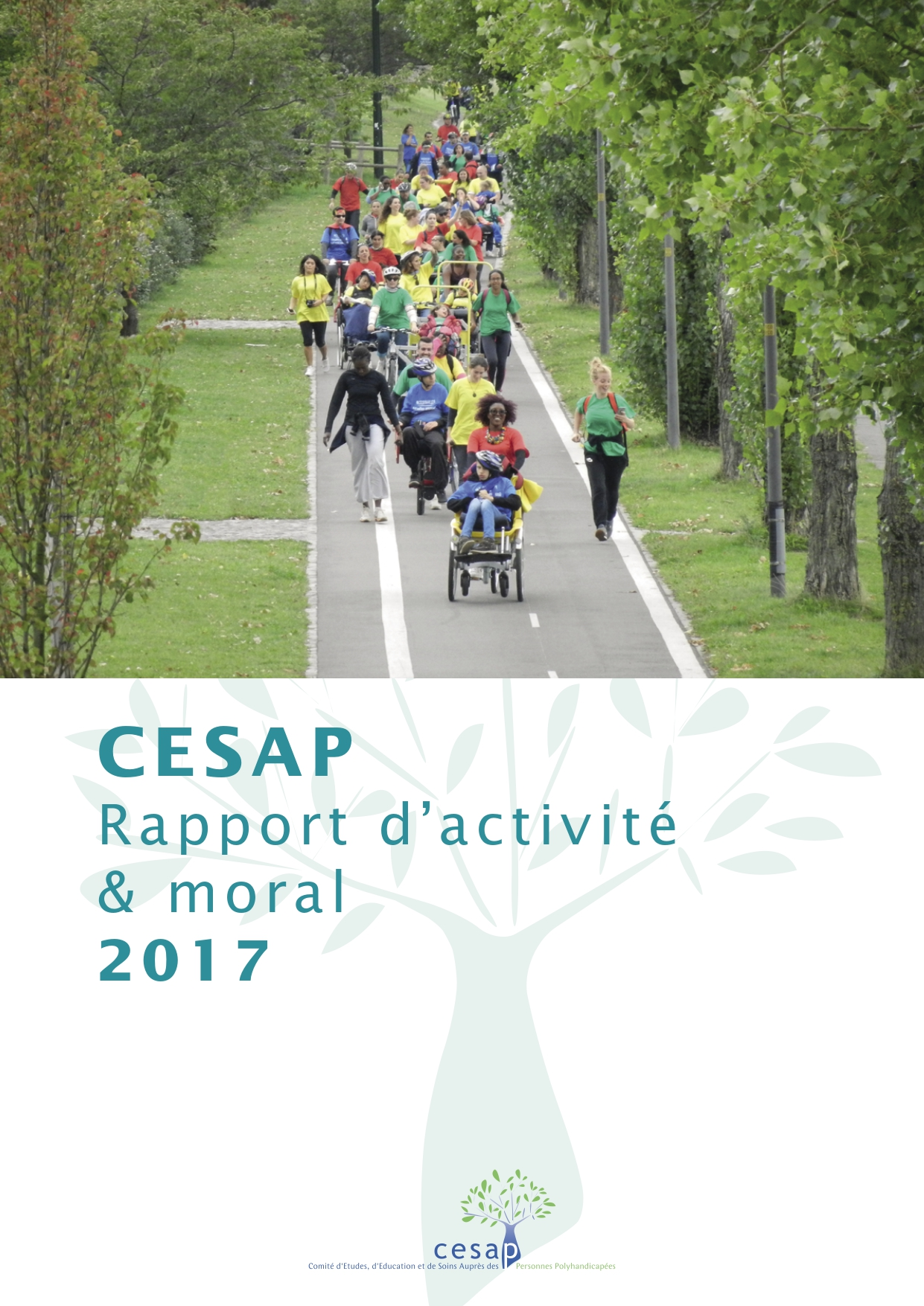 Rapport moral activite 2017-Vdef-couverture page-0001